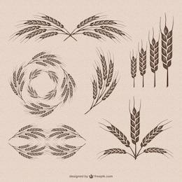 Collection rétro de vecteur de blé