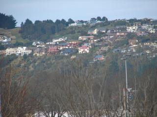 Collines de Dunedin