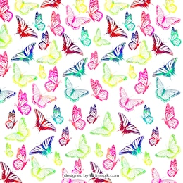 Colorful Butterflies fond