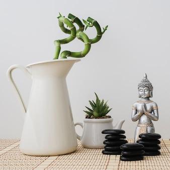 Composition avec le bouddha, les plantes et les pierres