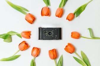 Composition de printemps avec appareil photo vintage et des tulipes orange