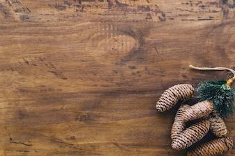 Cônes de pin et espace à gauche