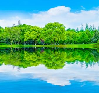 Décoration paysagère nature reflet montagnes pelouse