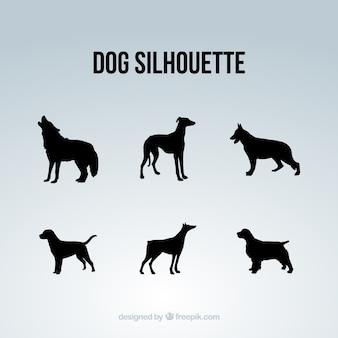 Dog silhouette fond