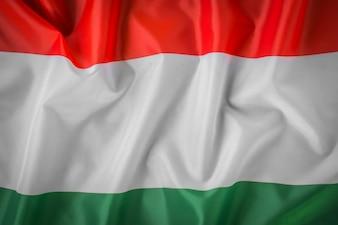 Drapeaux de Hongrie.