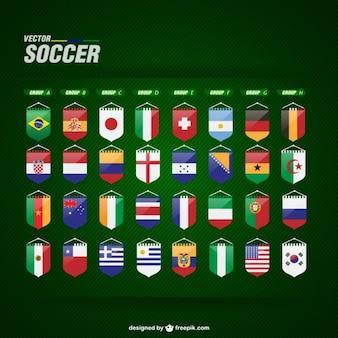 Drapeaux de soccer vecteur libre