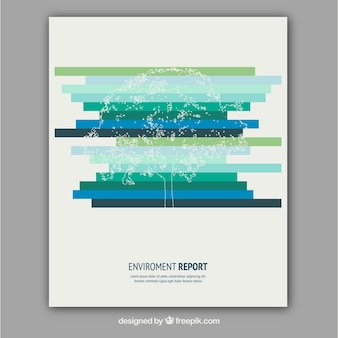 Rapport Environment
