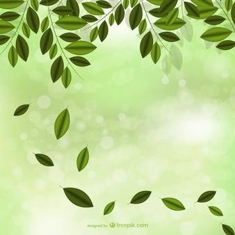 La chute des feuilles