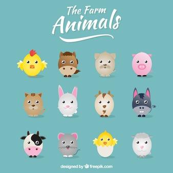 la collecte des animaux de la ferme