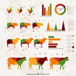 Farming infographie