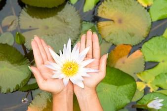 Femme, tenue, lotus, fleur, waterlily