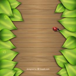 Feuilles sur fond de bois