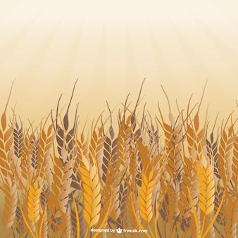 Champ de vecteur de blé