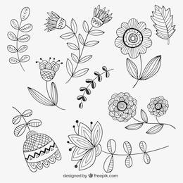 fleurs dessinés à la main