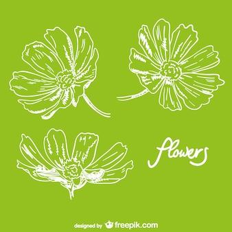Conception tirée par la main de fleurs