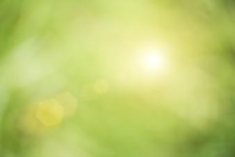 Fond abstrait vert et flamme len