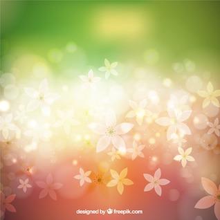 Fond printemps coloré