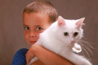 Garçon tenant un chat