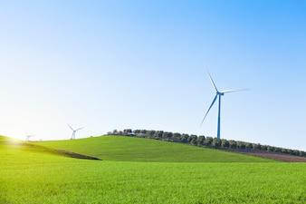 Générateur d'énergie éolienne