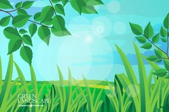 Vert fond de paysage