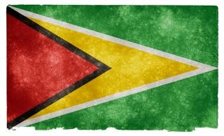 Guyana flag grunge