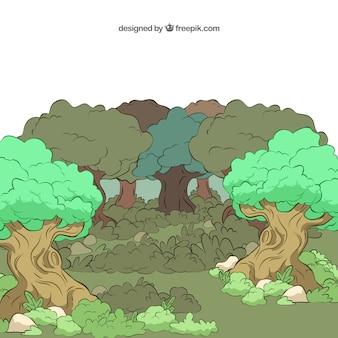 Illustré forêt