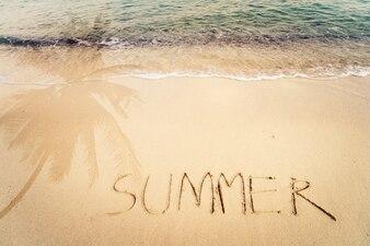 Inscription Été écrit sur la plage de sable avec ombre océanique et ombre palmier - espace libre. effet de couleur de couleur vintage