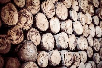 Journaux Woodpile forêt empilés écorce