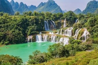 Jungle tropicale asiatique belle campagne