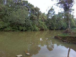 La beauté du Kerala, de la saleté