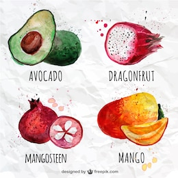 la collecte des fruits de Aquarelle