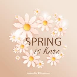 Le printemps est là avec des marguerites