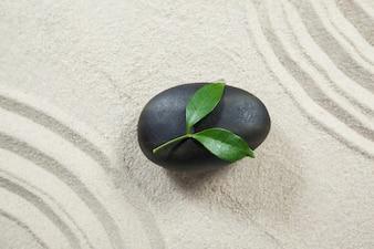 Les feuilles sur pierre noire de galets