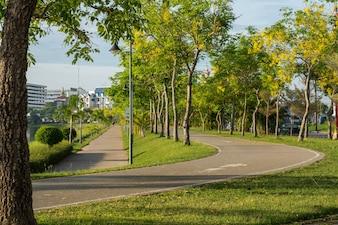 Ligne de vélo et parcours de jogging dans le parc