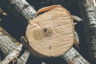 Log abstrait brun renouvelable couleur