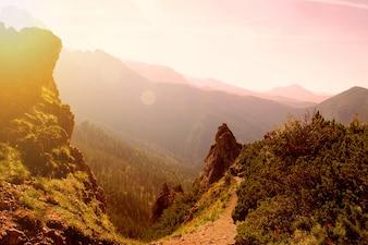 Montagnes en plein air de plantes vertes occidentales