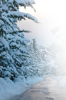 Montagnes glacées de saison couleur saine