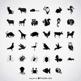 Oiseaux simples silhouettes