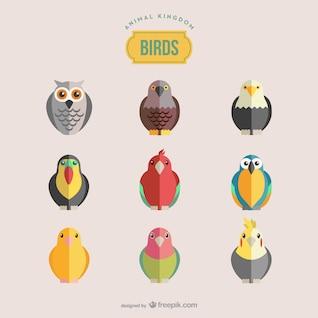 Oiseaux vecteur ensemble