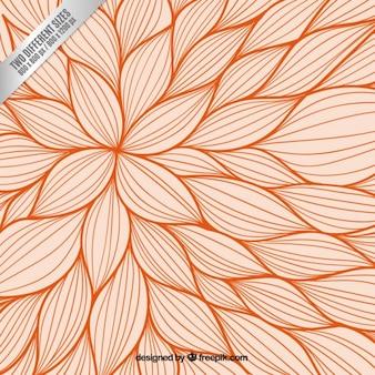 Orange fond floral