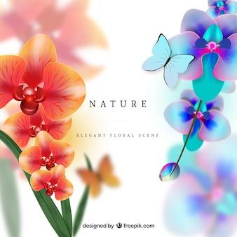 Orchidées colorées