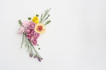 Ornement floral sur fond blanc