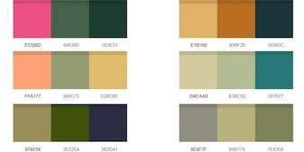 palettes de couleurs merveilleuses psd