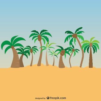 Palmiers paysage exotique