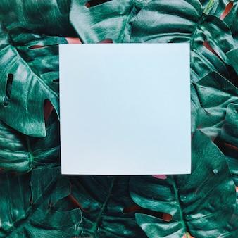 Papier blanc sur le fond des feuilles vertes pour la conception d'affiches ou de modèles, concept de printemps