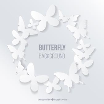 Papillons cadres