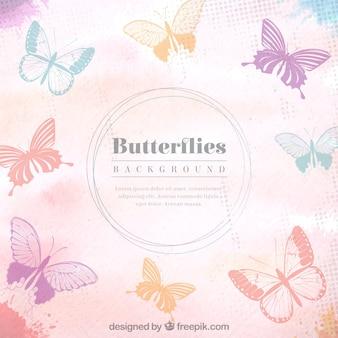 Papillons fond