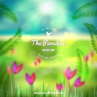 Paradise affiche