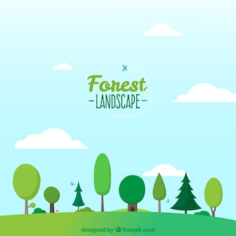 Paysage de forêt
