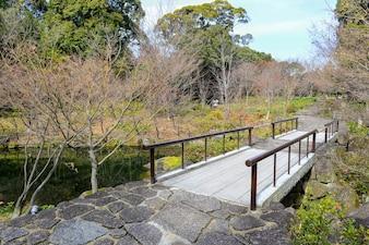 Paysage naturel avec un pont en bois